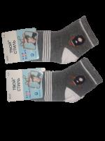 Носки детские 2 пары размер 12-16 Твой стиль № 3026 Темно-серые